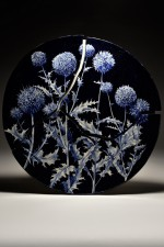 Thistles I from the On the Emptiness of Fame and the Fleeting Taste of Wild Strawberries series